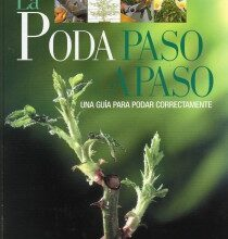 Photo of Guia de Poda de Plantas Domésticas