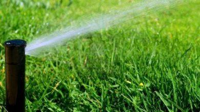 Photo of Irrigação de jardim faça você mesmo
